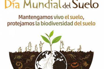 """La Agricultura de Conservación se reivindica como """"la mejor opción"""" para proteger los suelos"""